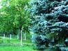 sobe-jovan-fruska-gora-11